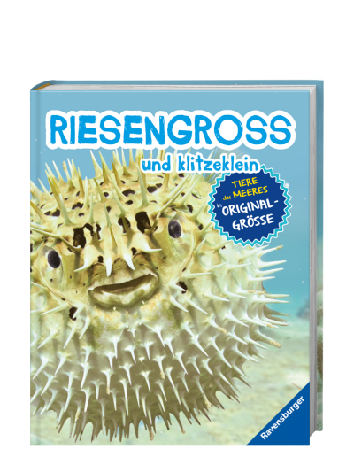 Riesengross_und_Klitzeklein_Meer