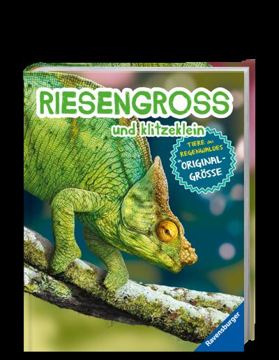 Riesengross_und_Klitzeklein_Regenwald